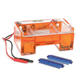 Gel electrophoresis apparatus & combs